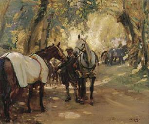 A Horse Fair in Ireland