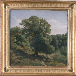 VIEW OF A FOREST PATH, FONTAIN