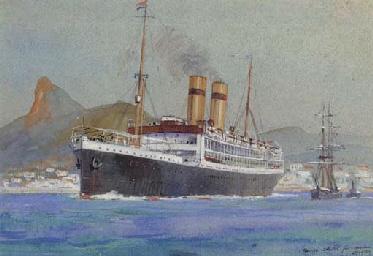A passenger liner en route to