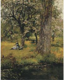 Sotto gli alberi in fiore