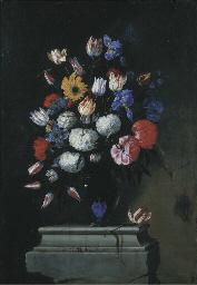 Tulipani, boules de neige, ros