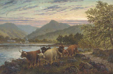 Cattle on the waters edge at B