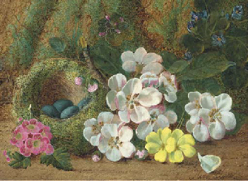 Apple blossom, primroses and a