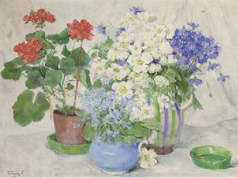 Primulas, anenomes, cornflower