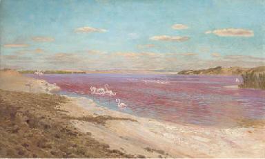 The flamingo lake