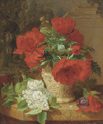 Poppies in a vase, with white