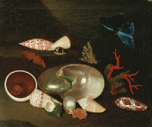 A still life of shells and but