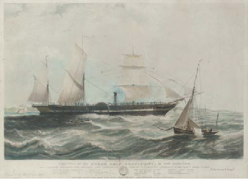A View of the steam ship S.S.