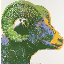 Bighorn Ram, from Endangered S