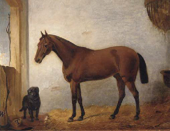 A chestnut hunter with a black