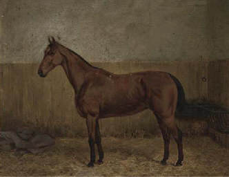 Heather Bell, in a stable