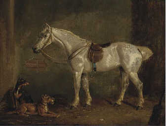 A saddled grey with terriers i