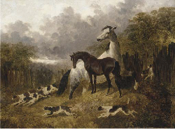 A mare and foal with a pack of