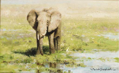 An Elephant at a water hole