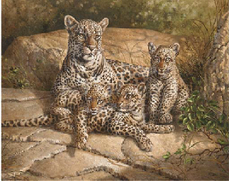 A leopard with her cubs