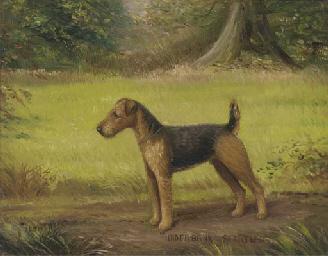 Underbank Startler, a terrier