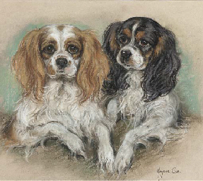 Two King Charles spaniels