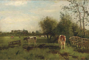 Cows in a meadow in spring, a
