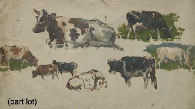A collection of oil studies of