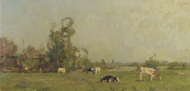 Cows in a summer meadow