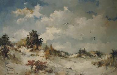 Seagulls in the dunes at Schoo