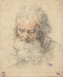 The head of a bearded man look