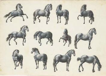 Twelve studies of horses