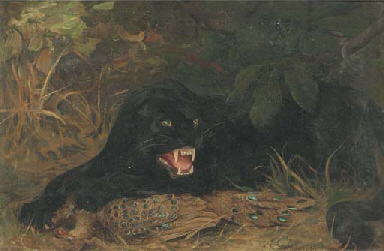 A panther guarding his kill