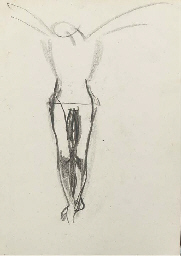 Crucifixion leg study