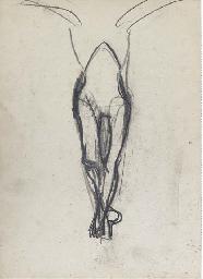 Leg study for the Northampton