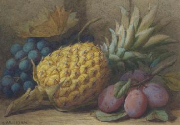 Still life of grapes, a pineap