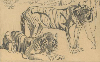 Two tigers (illustrated); and