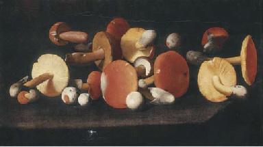 Boletus, russulas and other mu