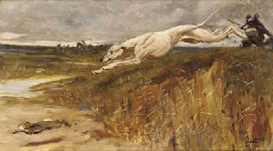 A greyhound chasing a rabbit