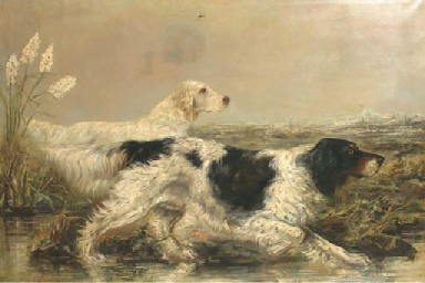 Dogs on a hunt