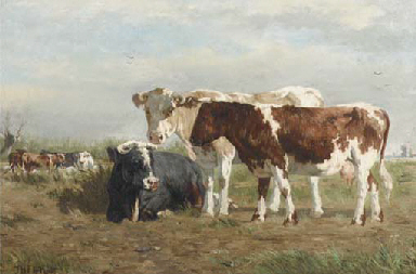 Cows along a ditch