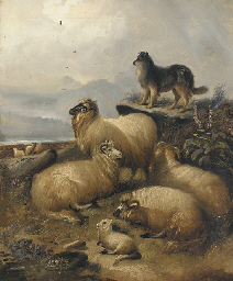 Sheep and a collie in a landsc