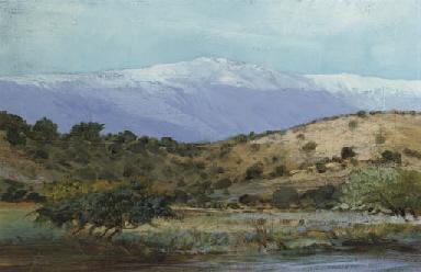 A Chilean landscape
