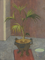 Still life of a pot plant with