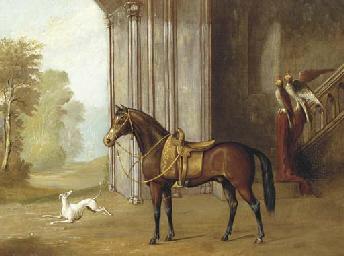 A saddled bay pony in a courty