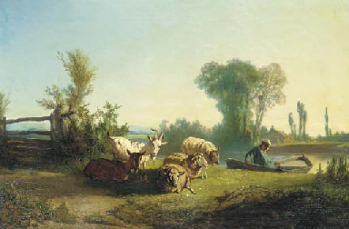 Sheep and goats resting by a r