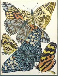 Papillons: Four Plates