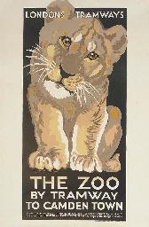 THE ZOO, LION CUB