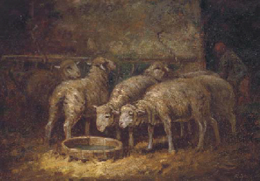 Sheep watering in a stable