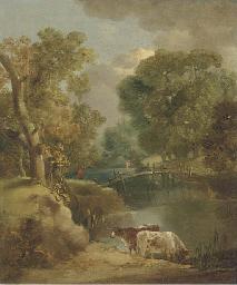 Cattle watering in a wooded la