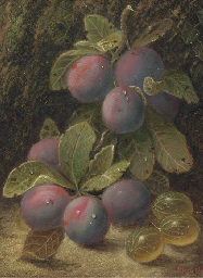 Plums and gooseberries on a mo