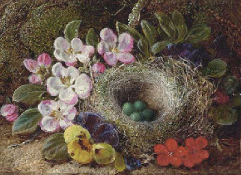 Apple blossom, pansies and a b