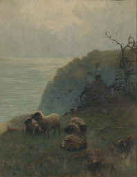 SHEEP BESIDE A CLIFF, OVER LOO