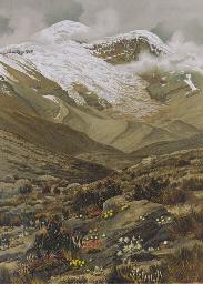 MEYER, Hans Heinrich Joseph.
