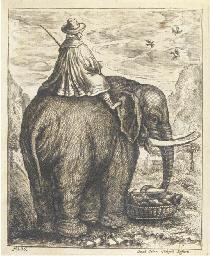 ELEPHANTS -- PETRI VON HARTENF